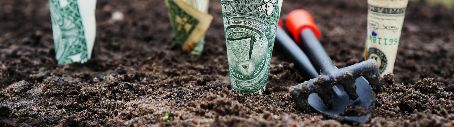 Raising capital?